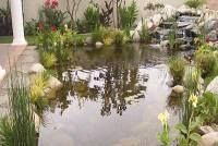 Аквадизайн в Тюмени – чудо в вашем саду